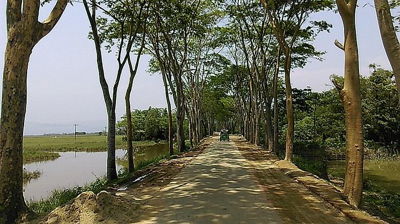 Way to Bisnakandi